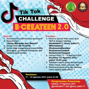 Read more about the article Tiktok Challenge BCreateen 2.0